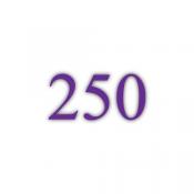 250g Bilderdruckpapier (PT)