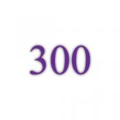 300g Bilderdruckpapier (GK)