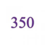 350g Bilderdruckpapier (FL)