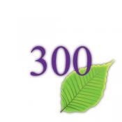 300g Recyclingpapier (BK)